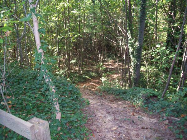 Roanoke Canal Arts Trail