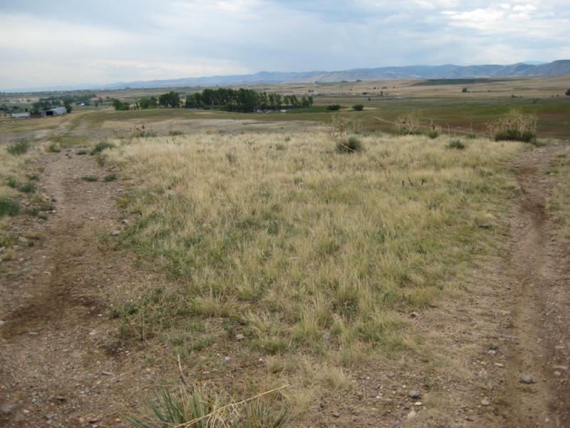 Colorado Hills Trail