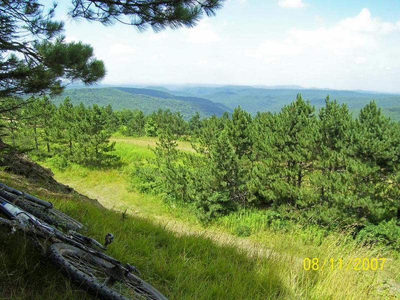 Props Run Trail