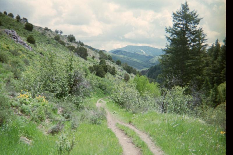 west fork asian singles Alphabetical list the following alphabetical list includes many important streams that flow through the state of colorado including all 158 named riverswhere available, the total extent of.