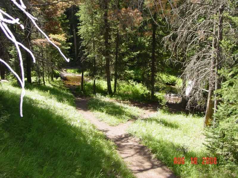 Little Blackfoot Meadows Loop