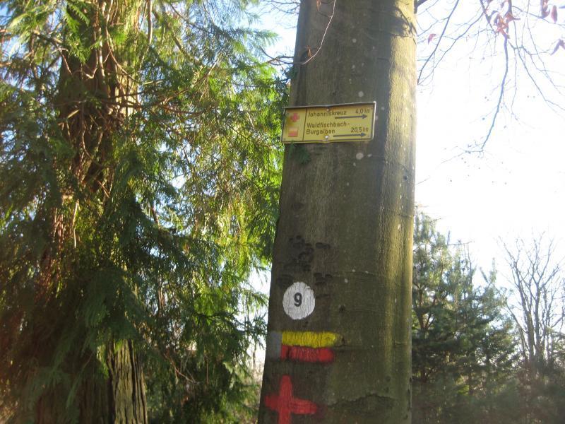 Johanniskreuz Trail 9