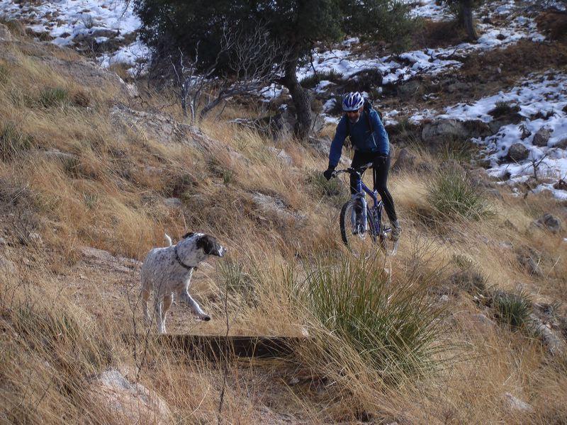 Arizona Trail: ATV / Tucson