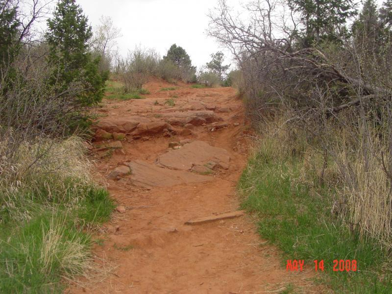 Palmer Trail / Section 16