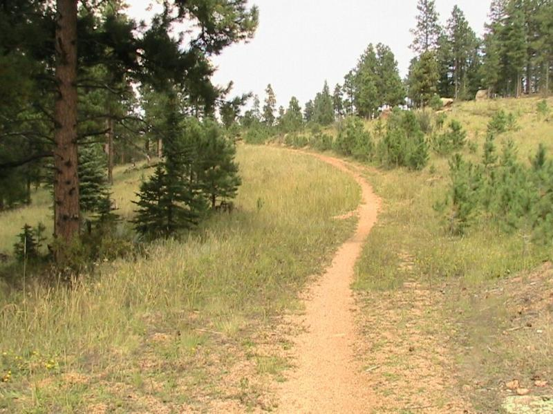 Colorado Trail: Green Mountain