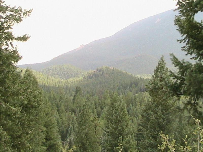 Colorado Trail: Green Mountain