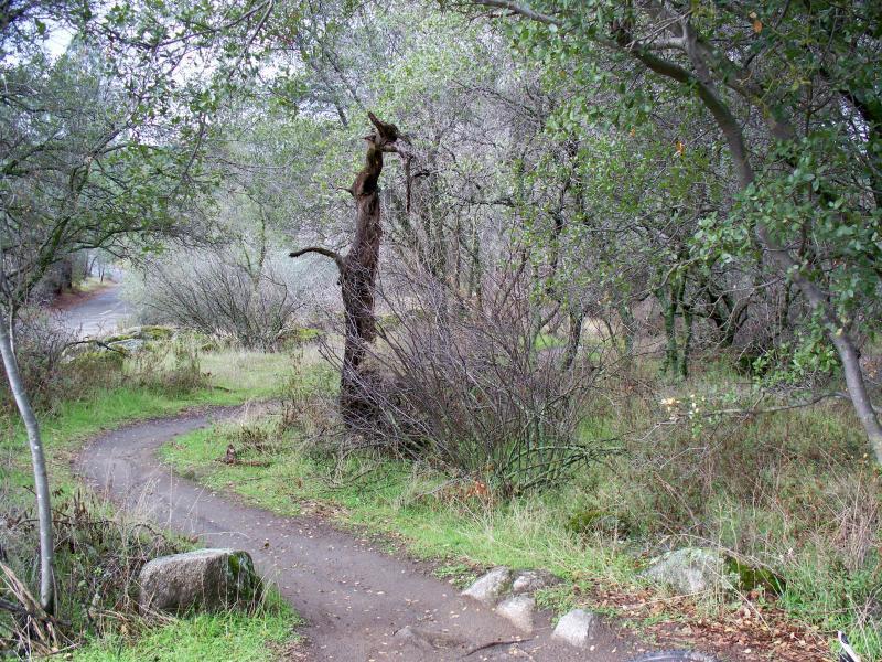 Granite Bay Trail