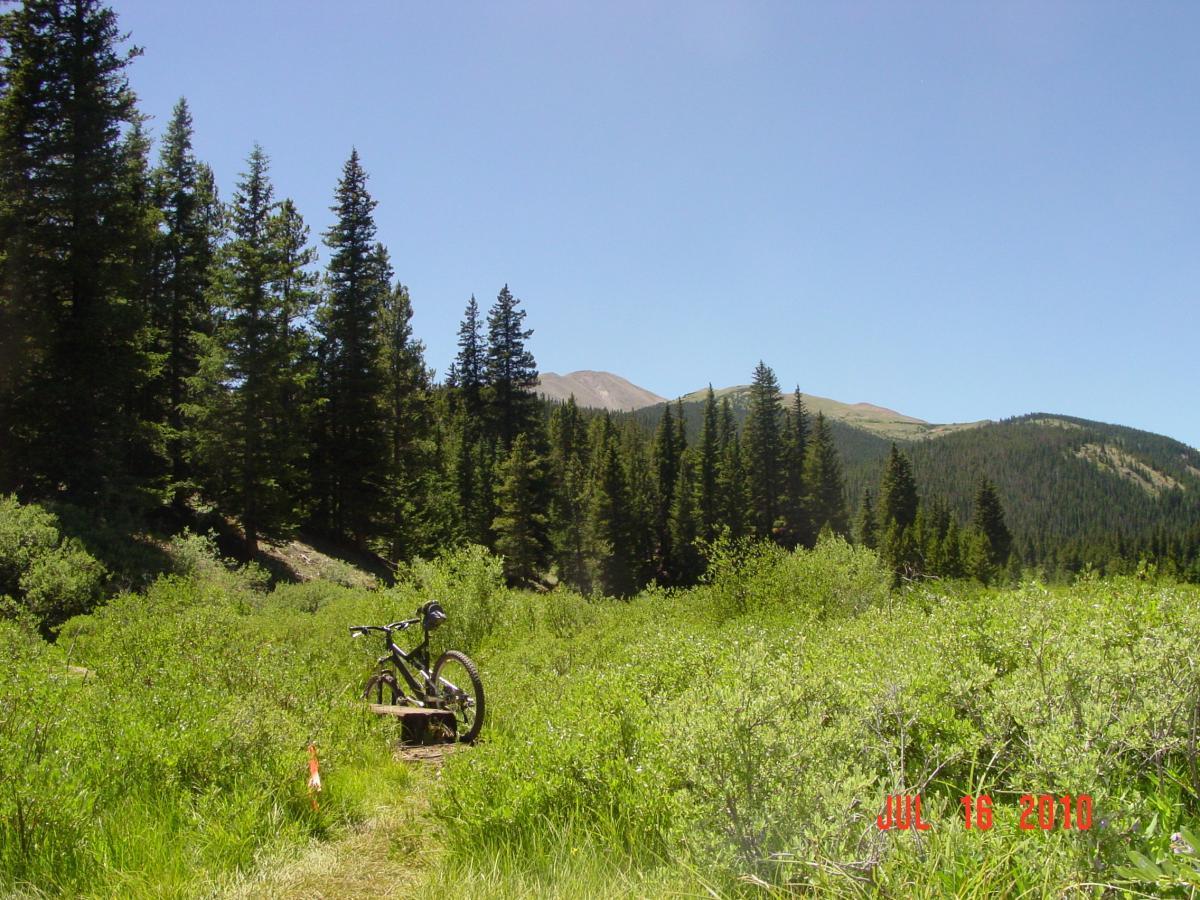 Gold Dust Trail