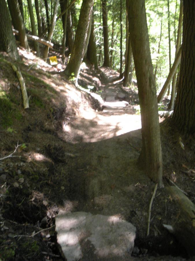 Noquemanon Trails Network: South Marquette Trails