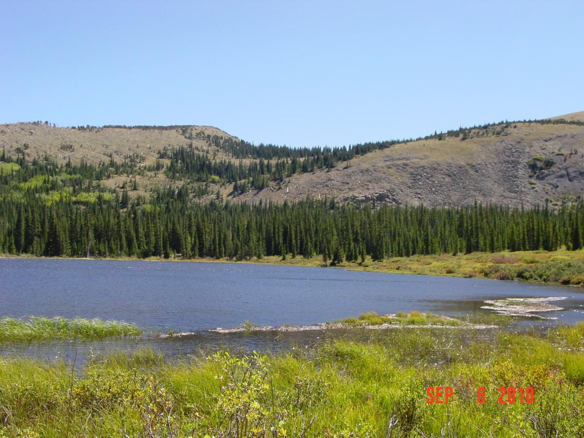 Sheep Creek