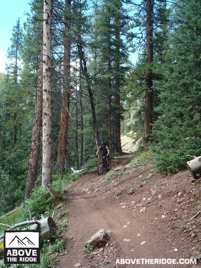 Reno / Flag / Bear / Deadman Loop