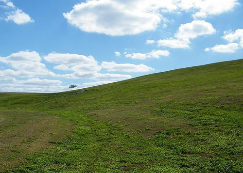 Vista View Park