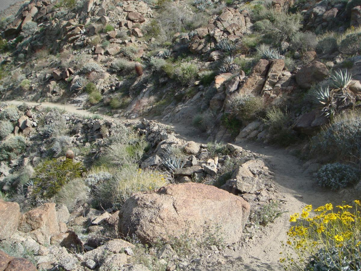 Art Smith Trail