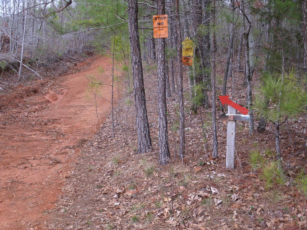 Iron Legs Trail