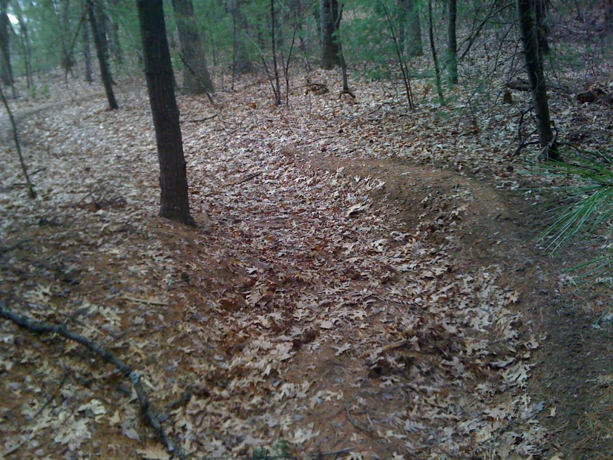Wrentham State Forest
