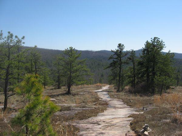 Cedar Rock Trail #16