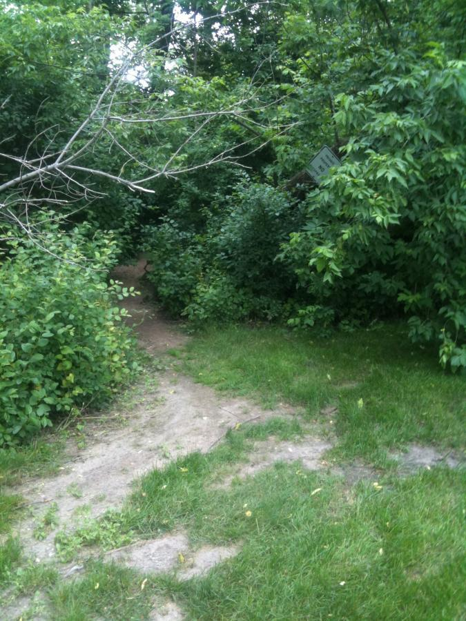 Milwaukee River Trail