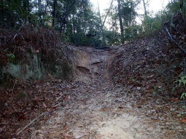 Canal Diggings