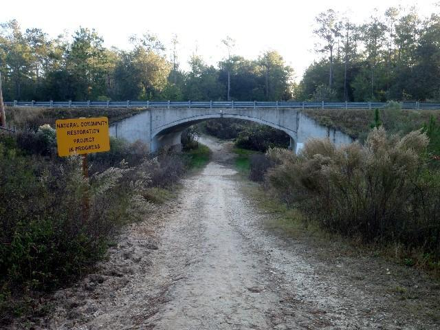 Nayles Trail