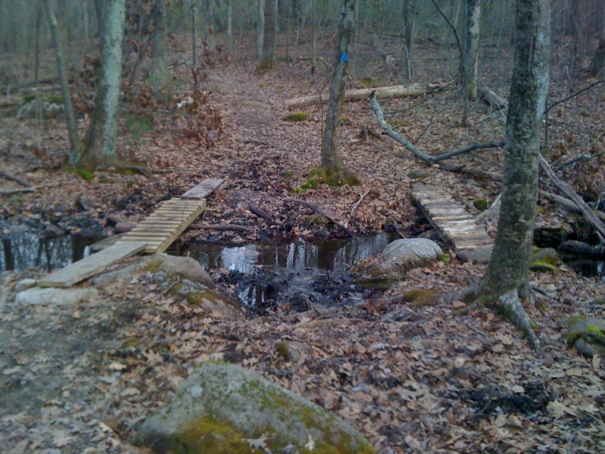 Upton State Forest