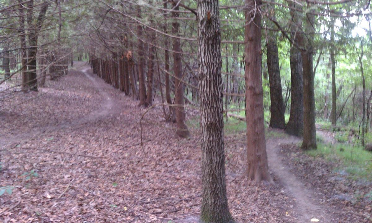 Decorah Mtb Trail System