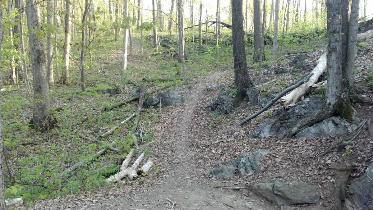Sugar Hollow Park