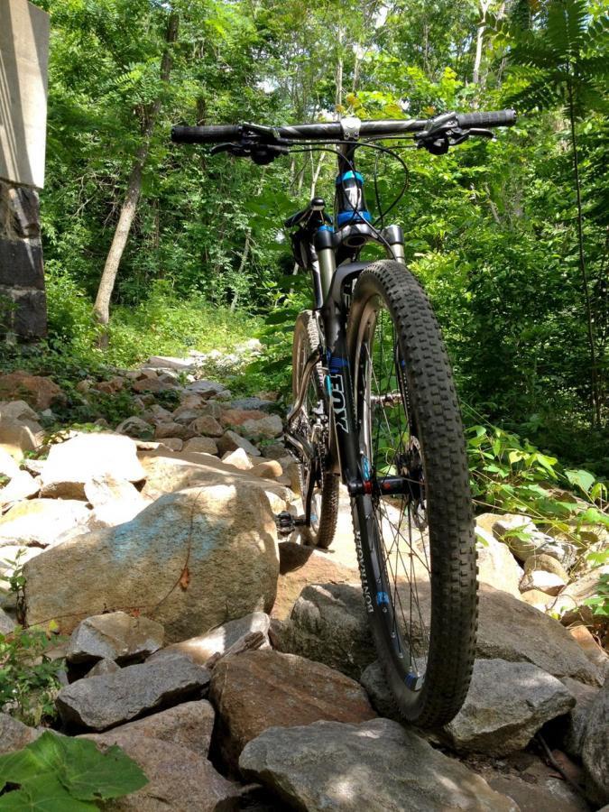 Belle Isle Mountain Bike Trail In Richmond Virginia Singletracks Com
