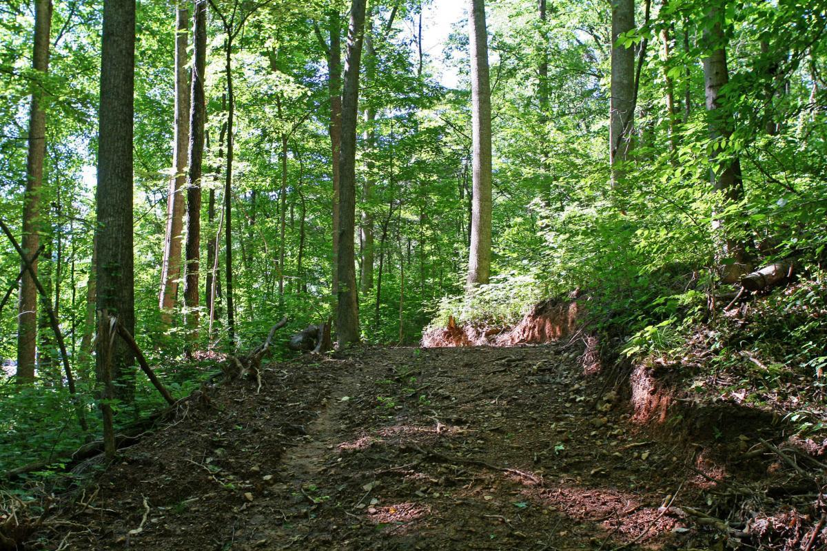 The Trails At Fontanel