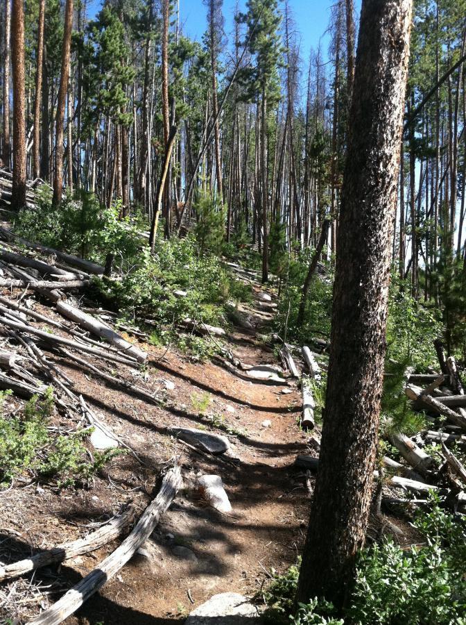 Grand Lake Rec Trails