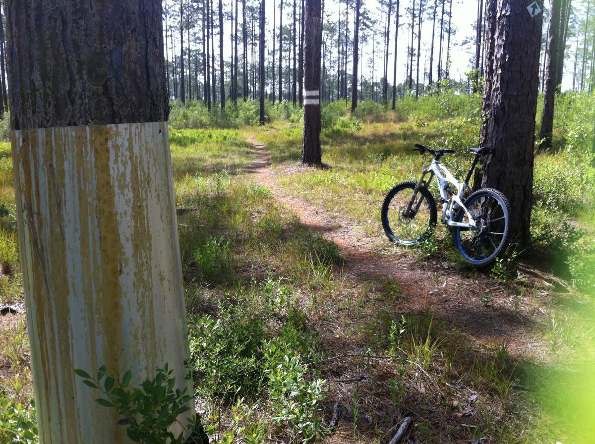 Bethel Bike Trails