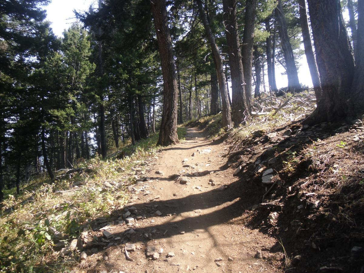 Leverich Trail