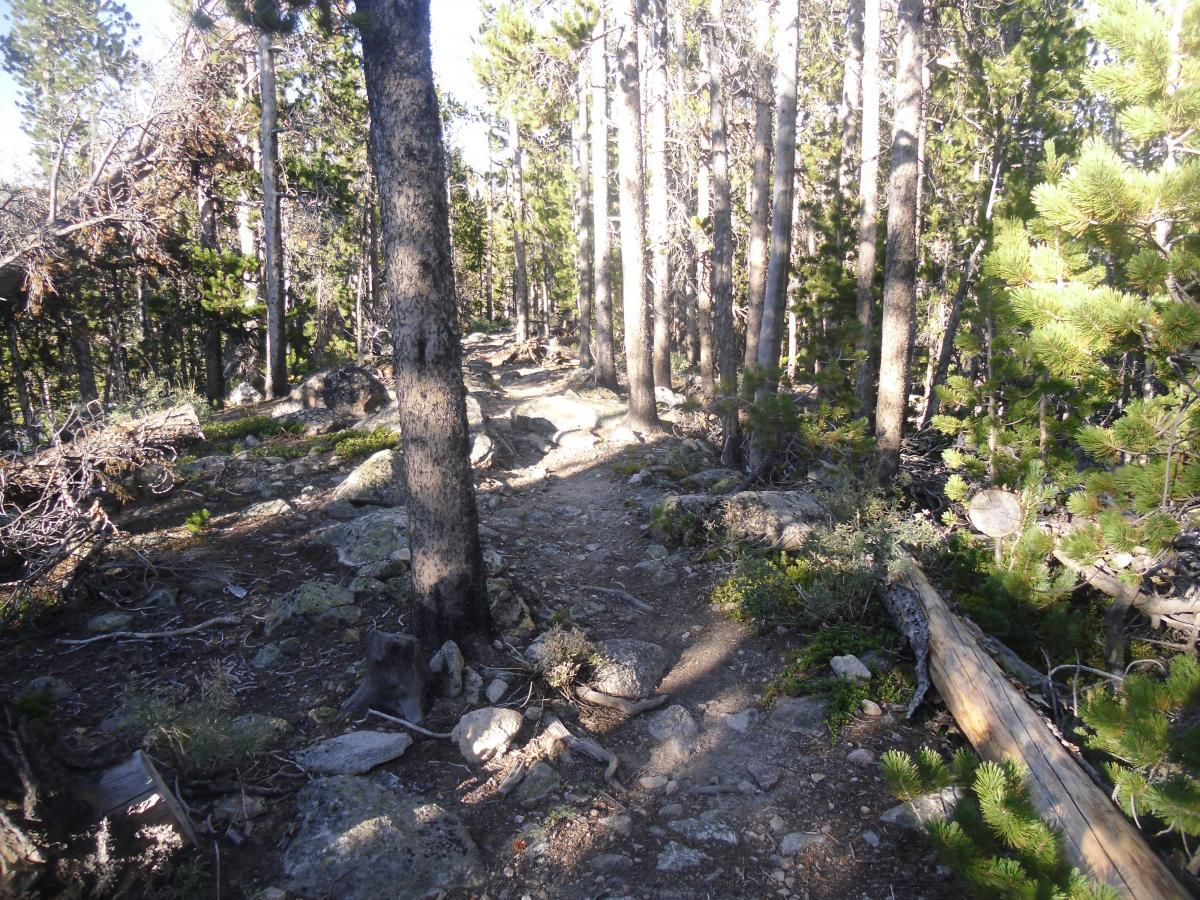 Silver And Basin Lakes Trail
