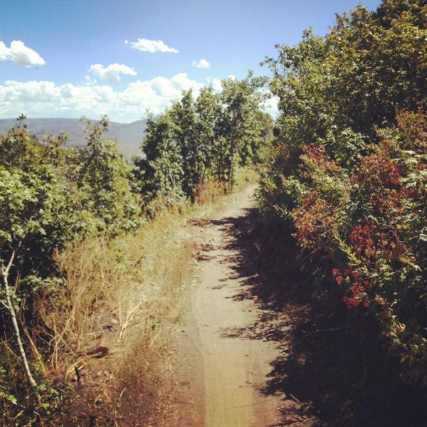 Sardine Peak Loop