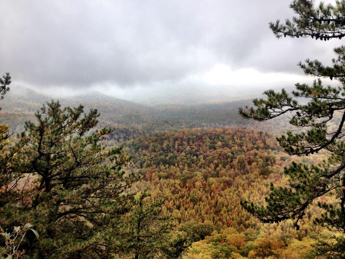 Laurel Mountain
