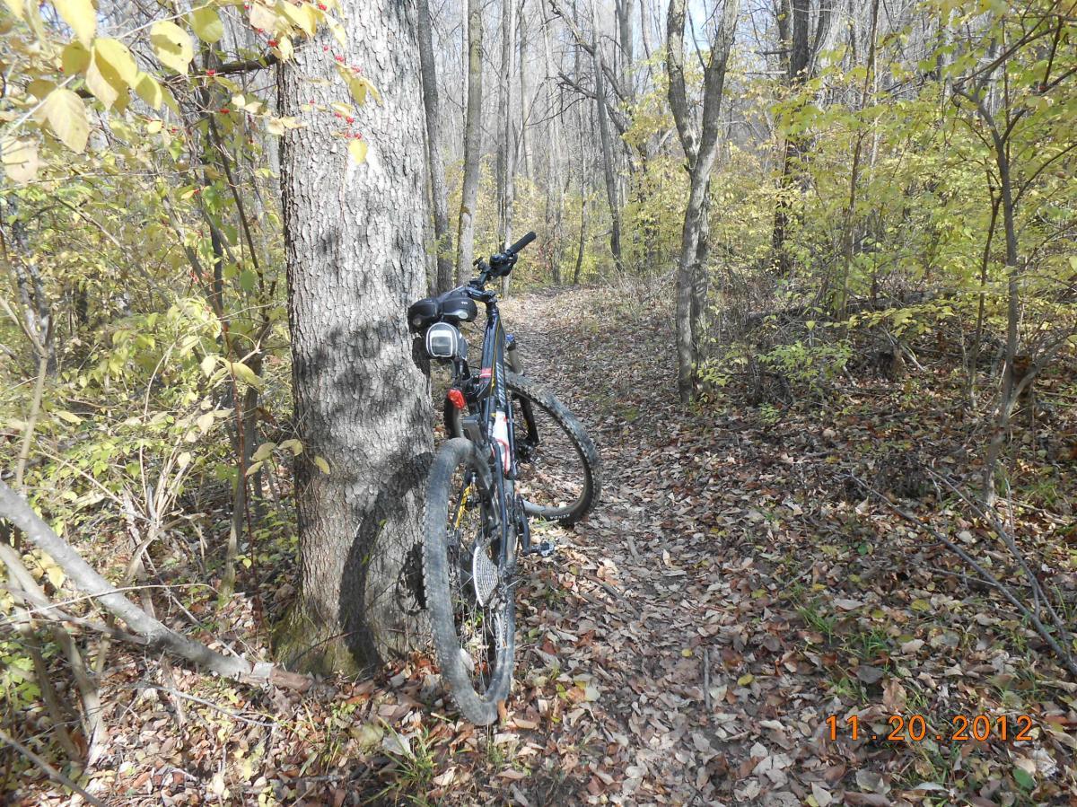 Westwood Trails