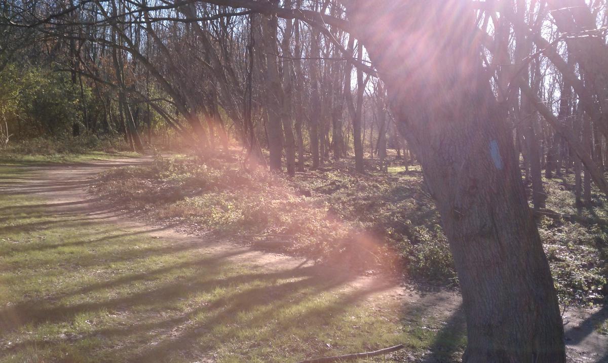Seneca Creek Greenway Trail