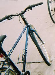 Raleigh C30