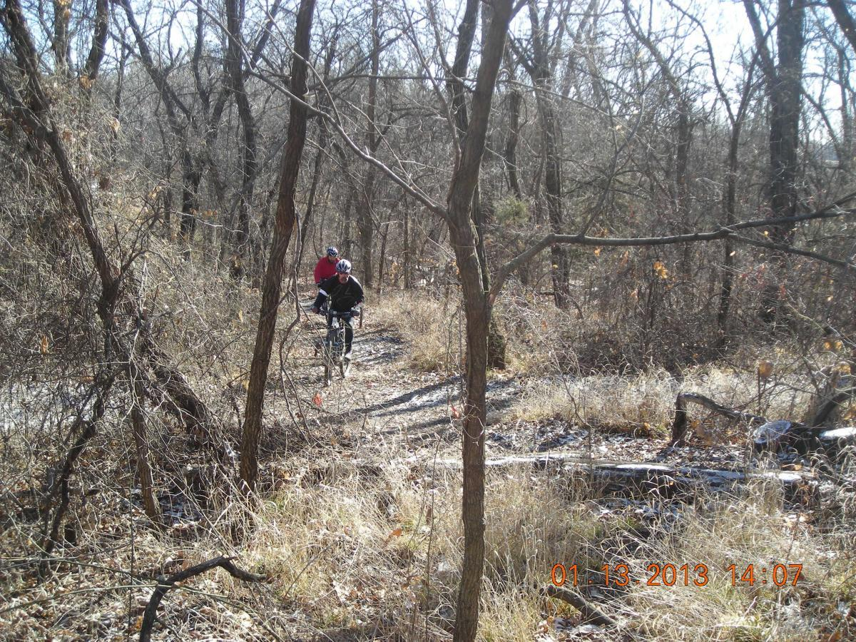Camp Alexander Trails