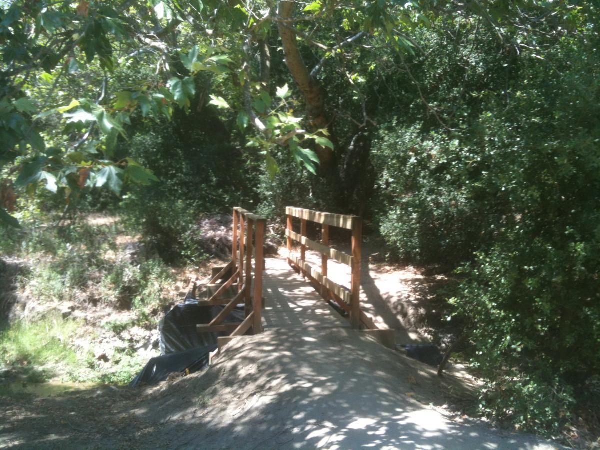 Coyote Run Trail
