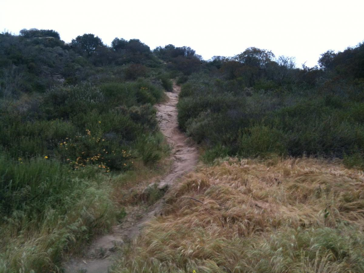 Laguna Ridge Trail