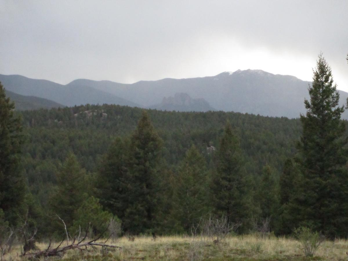 Colorado Trail: Buffalo Creek To Lost Creek Wilderness Boundary