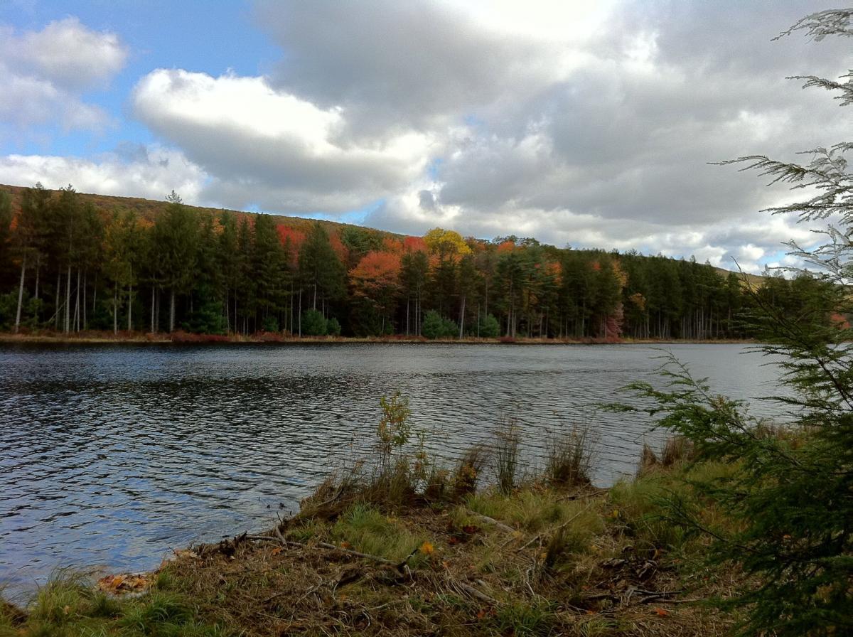 Roaring Creek Watershed