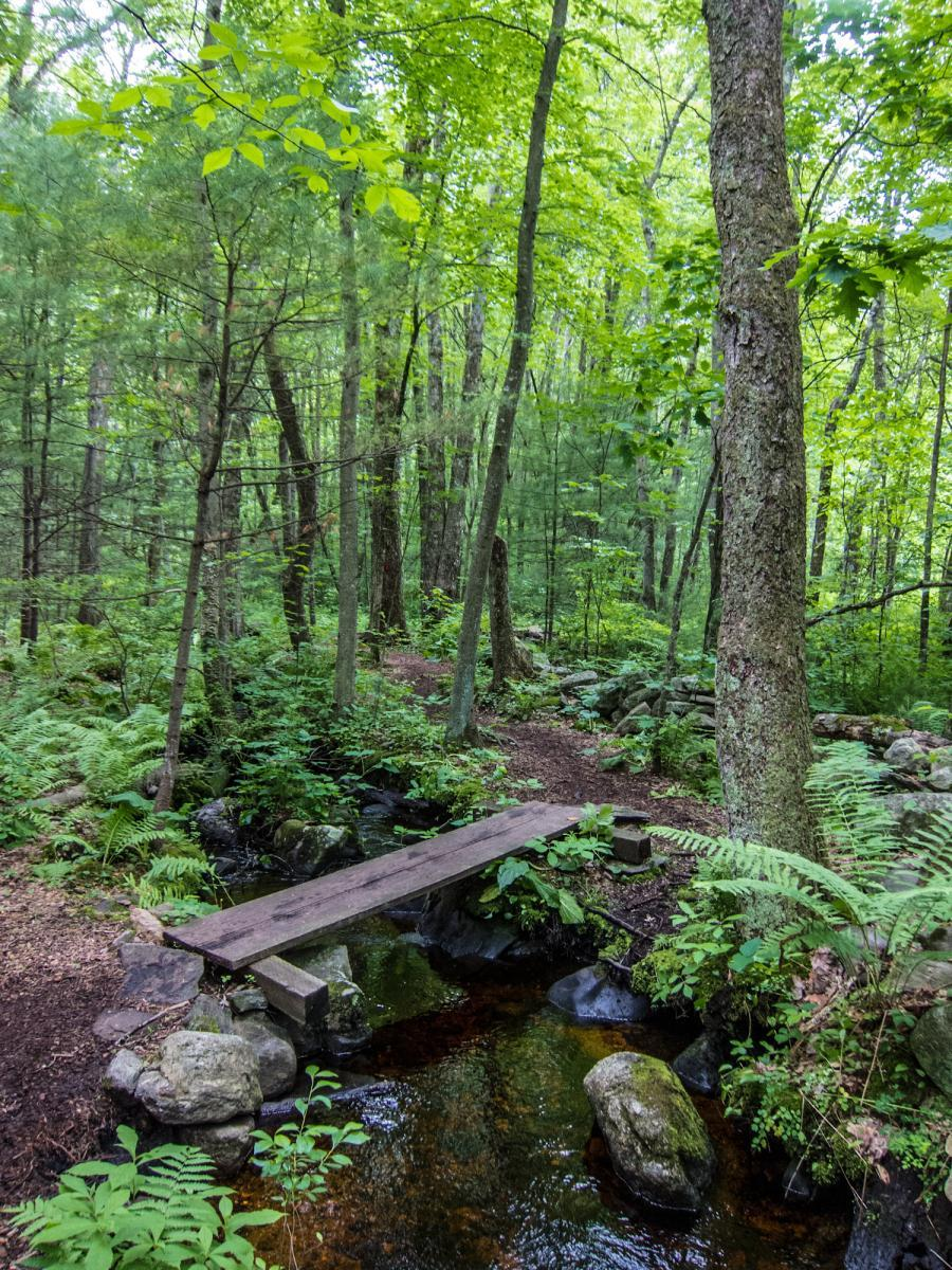 Boxboro Trail link-up