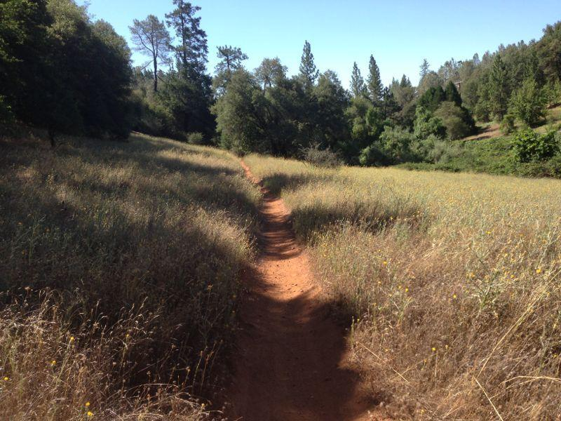 Foresthill Divide