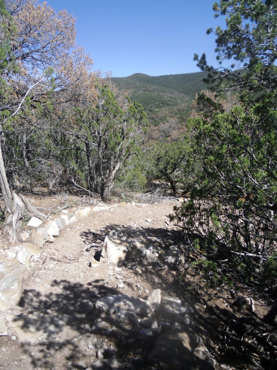 Birdhouse Ridge
