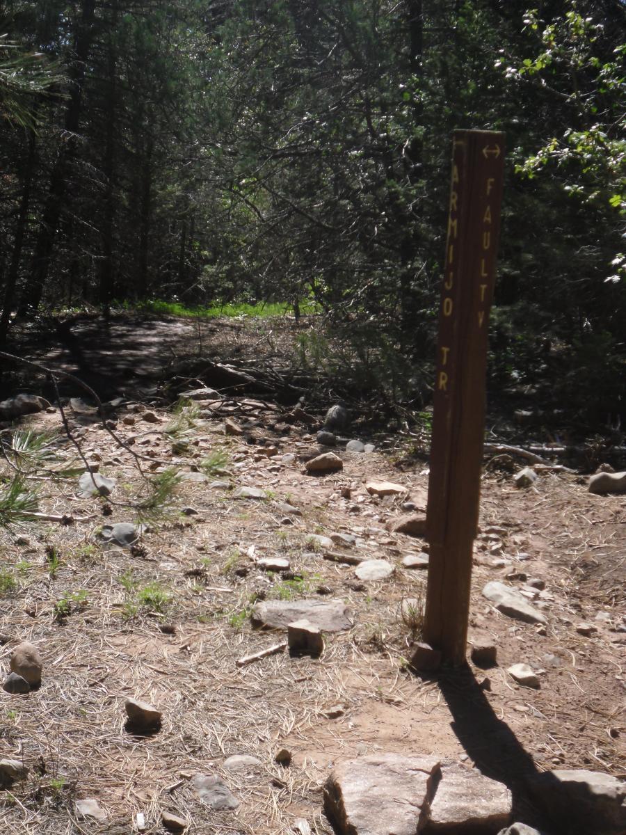 Armijo Trail