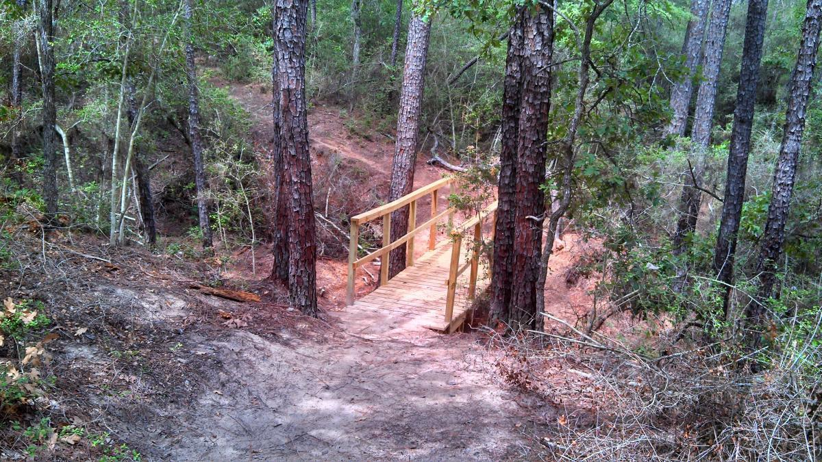 Buescher State Park Mountain Bike Trails