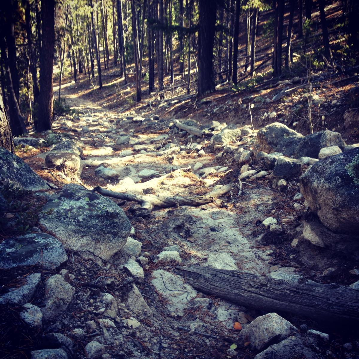 Browns Creek Trail