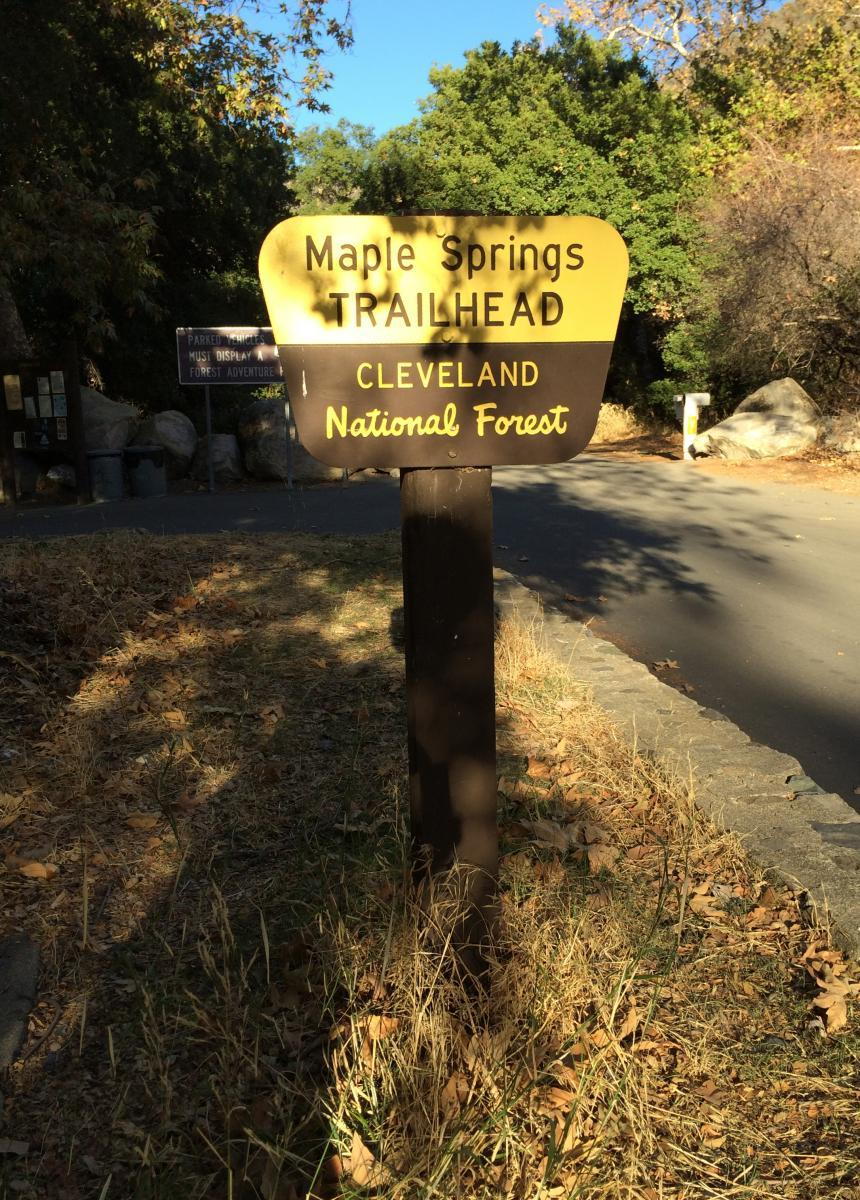 Maple Springs