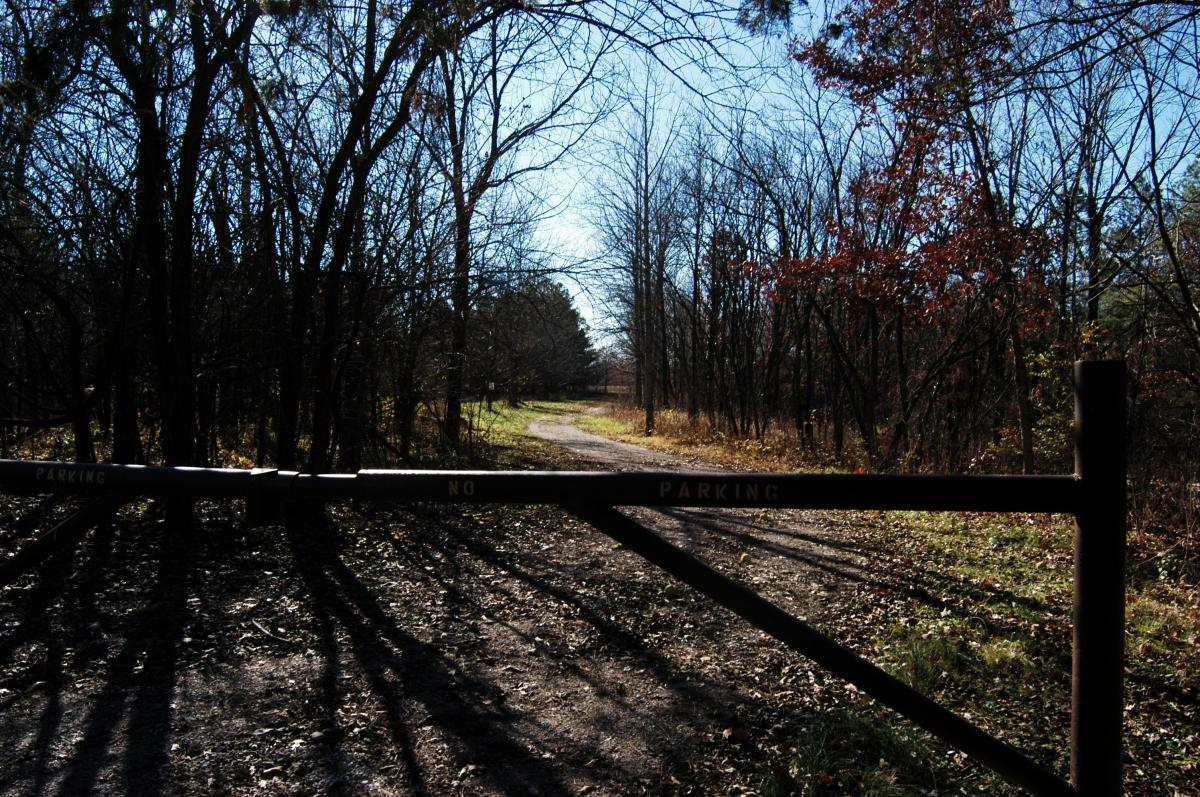 3 Creeks Conservation Area Mountain Bike Trail in Columbia